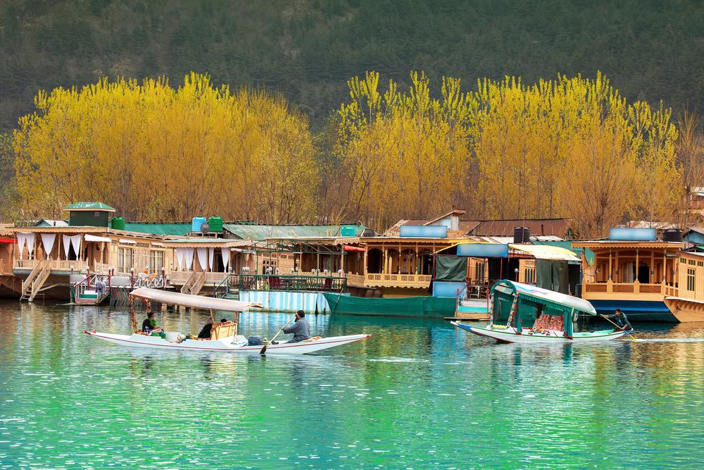 Lake Dal - Kashmir